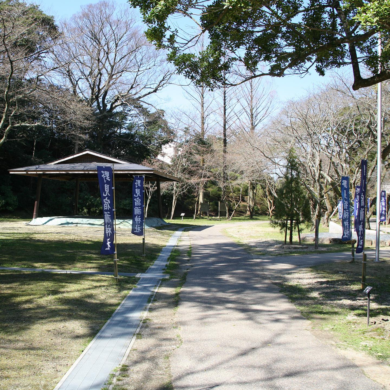 相撲の始祖「野見宿禰命(のみのすくねのみこと)」を祀る神社。神苑に土俵が見える