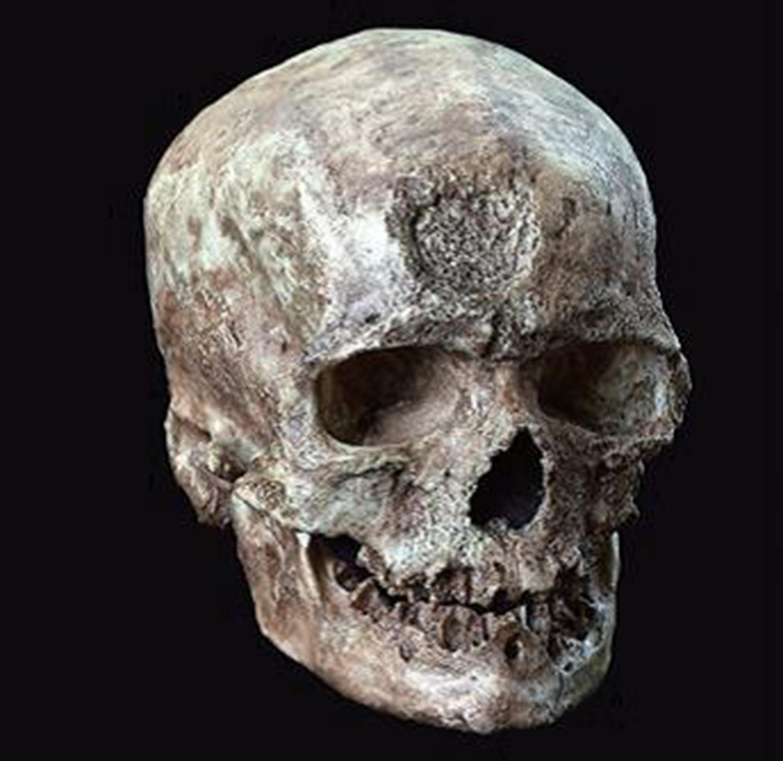 <クロマニョン人頭骨> 複製標本 国立科学博物館所蔵 ラスコー洞窟から10キロメートルほどのクロマニョン岩陰で1868年に発見された男性の頭骨。クロマニョン人という名の元になっている。
