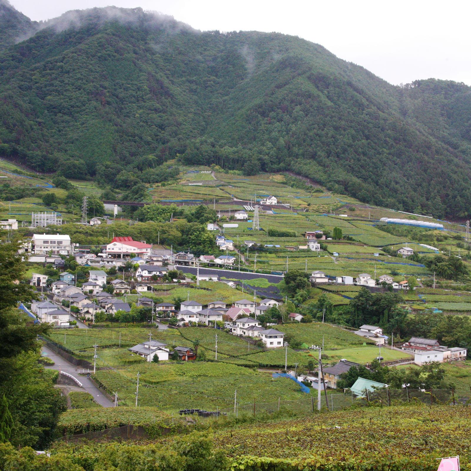 ぶどうの丘の東側には勝沼ぶどう郷駅を中心とした街並みが広がる。